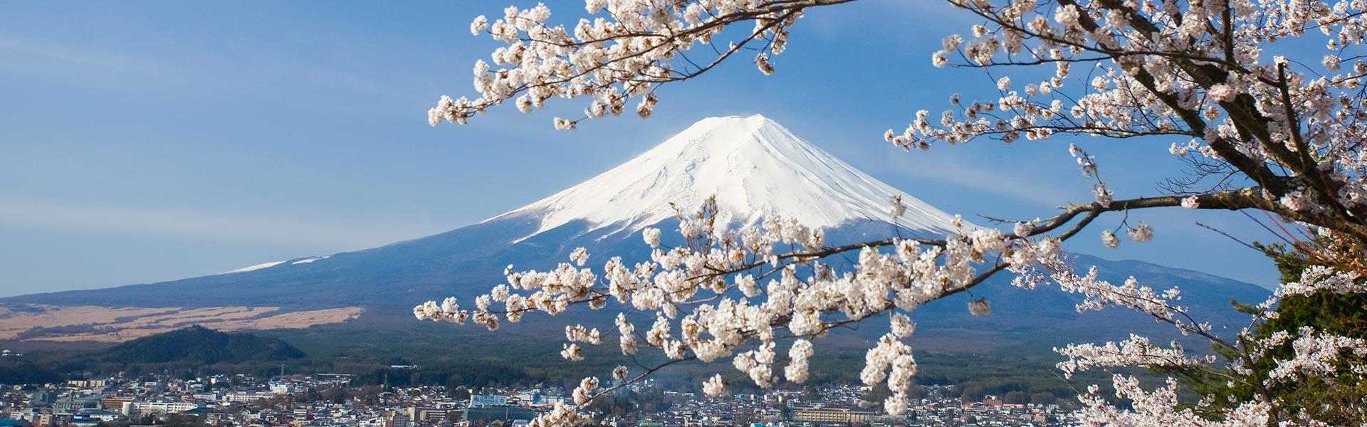 home-japan